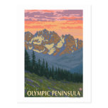 Olympic Peninsula, WashingtonSpring Flowers Postcard