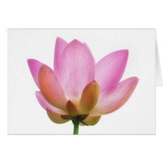 Om Lotus Pink Flower Petals Greeting Card