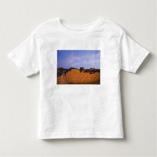 Oman, Dhofar Region, Salalah. Al, Baleed Toddler T-Shirt