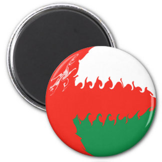 Oman Gnarly Flag 6 Cm Round Magnet