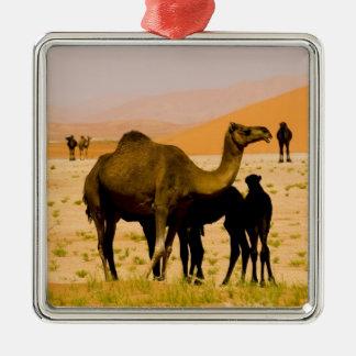 Oman, Rub Al Khali desert, camels (dromedaries), Christmas Ornament