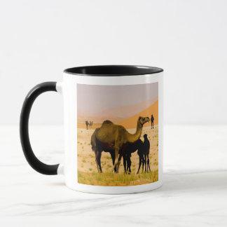 Oman, Rub Al Khali desert, camels (dromedaries), Mug
