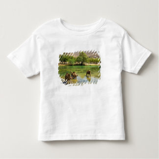 Oman, Wadi darbat, dromedaries pasturing in the Toddler T-Shirt