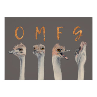 OMFG Ostriches Poster
