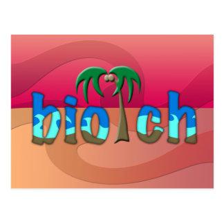 OMG biotch Postcard