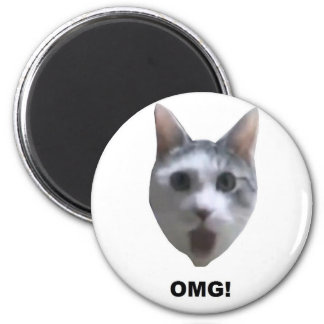 OMG CAT! (what has he seen?) 6 Cm Round Magnet