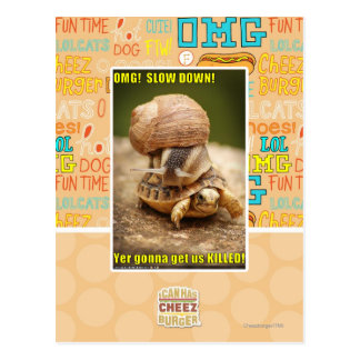 OMG! Slow down! Post Card