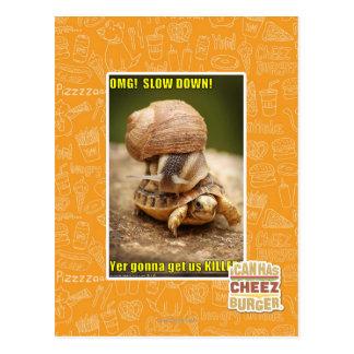 OMG! Slow down! Postcard