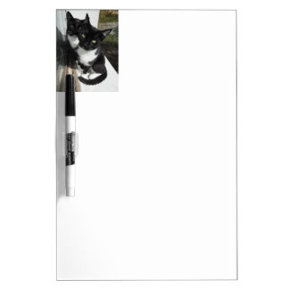 Ominous Cats Dry Erase Whiteboards