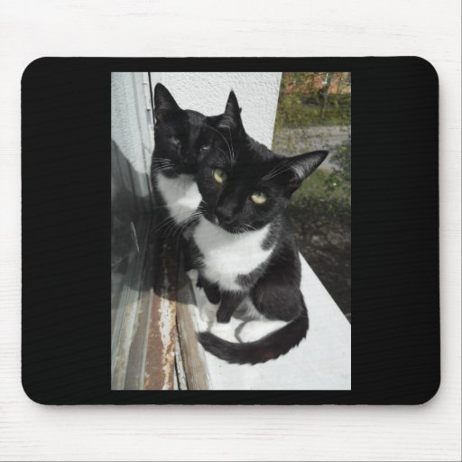 Ominous Cats Mouse Pads