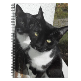 Ominous Cats Spiral Notebooks