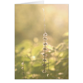 On a hot summer day greeting card