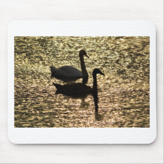 On Golden Pond Mouse Pad