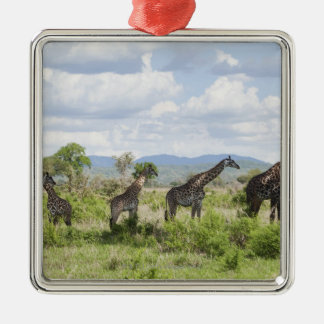 On safari in Mikumi National Park in Tanzania, 2 Christmas Ornament
