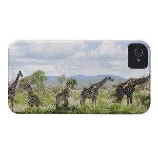 On safari in Mikumi National Park in Tanzania, 2 iPhone 4 Covers