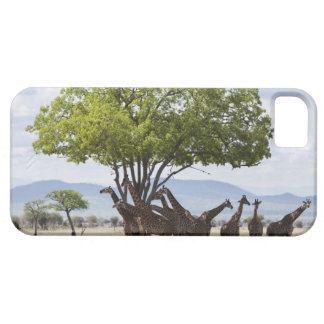 On safari in Mikumi National Park in Tanzania, Barely There iPhone 5 Case
