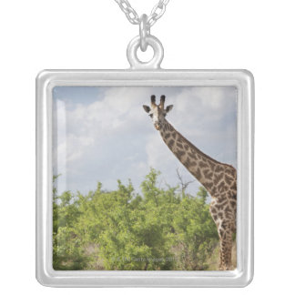 On safari in Tanzania, Africa. 2 Silver Plated Necklace