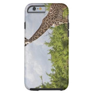 On safari in Tanzania, Africa. 2 Tough iPhone 6 Case