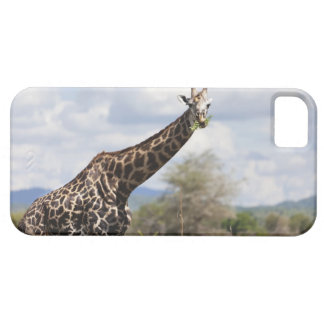 On safari in Tanzania, Africa. Barely There iPhone 5 Case