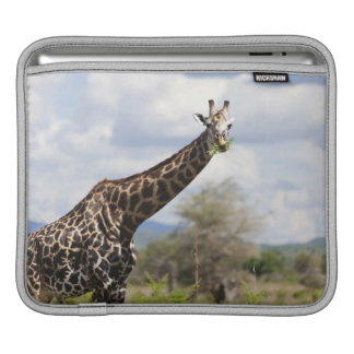 On safari in Tanzania, Africa iPad Sleeve