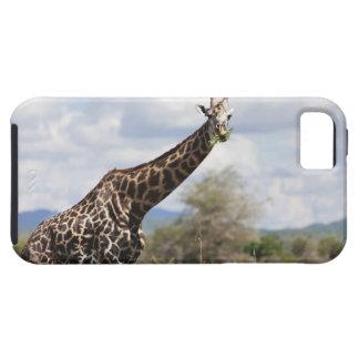 On safari in Tanzania, Africa. iPhone 5 Covers