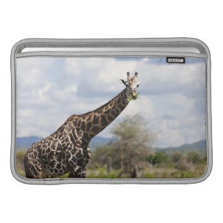 On safari in Tanzania, Africa Sleeve For MacBook Air