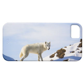 on snow covered terrain case for the iPhone 5