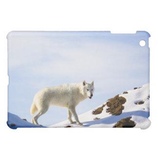 on snow ed terrain iPad mini cases