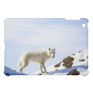 on snow ed terrain iPad mini cover