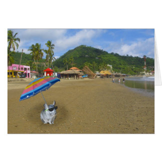 On the beach with Ernesto the Chinchilla Greeting Card