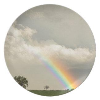 On The Edge Of A Rainbow Dinner Plates
