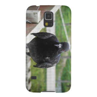 On The Fence Galaxy Nexus Cases