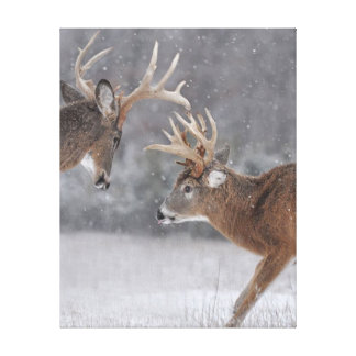 On the Hunt in a Winter Wonderland Gallery Wrap Canvas