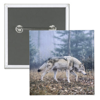 On the Prowl Timber Wolf 15 Cm Square Badge