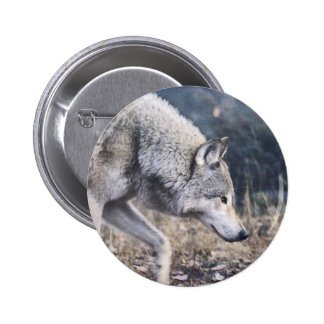 On the Prowl Timber Wolf 6 Cm Round Badge