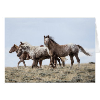 On the Ridge: Galloping to Freedom Greeting Card