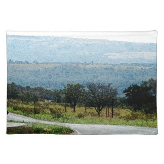 On the Road to Curitiba Cloth Placemat