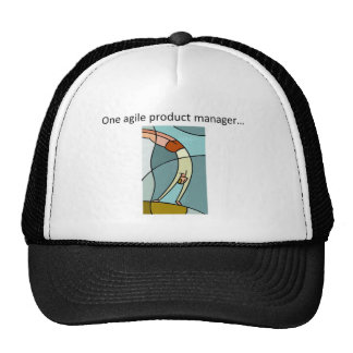 One Agile Product Manager... Trucker Hats