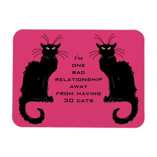 One Bad Relationship Away From Having 30 Cats Rectangle Magnets