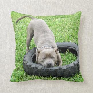 One_Bite_Or_Two,_Staffy_Lounge_Throw_Cushion, Throw Pillow