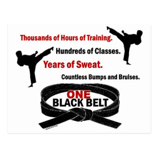 ONE Black Belt 1 KARATE T-SHIRTS & APPAREL Postcard