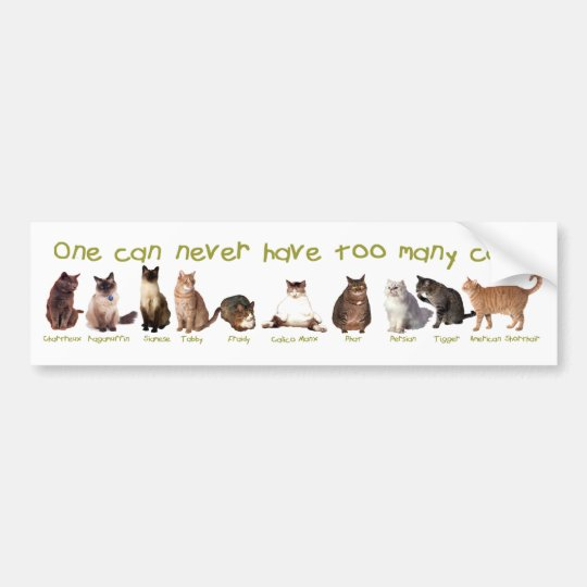 One can NEVER have too many cats. Bumper Sticker