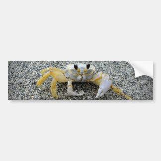 One Claw Joe Car Bumper Sticker