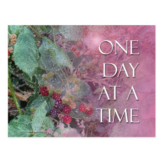 One Day at a Time Blackberries Postcard