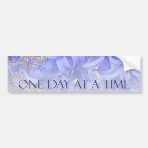 One Day at a Time Hyacinths Bumper Stickers