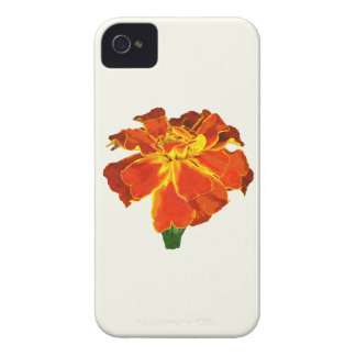 One French Marigold iPhone 4 Case-Mate Cases