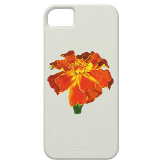One French Marigold iPhone 5 Cases