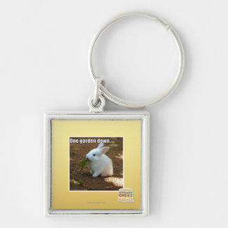 One Garden Down� Silver-Colored Square Key Ring