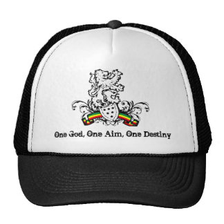 One God, One Aim, One Destiny Cap