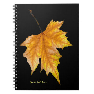 One Maple Leaf Notebook